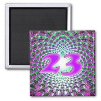 23 magnet