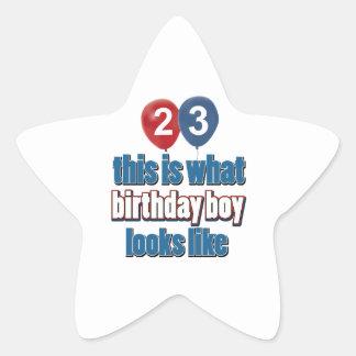 23rd year old birthday designs star sticker