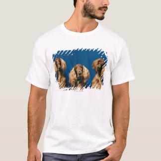 24119671 T-Shirt