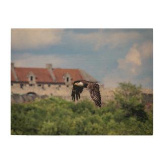 24x18 Bald Eagle passing Fort Ticonderoga Wood Print