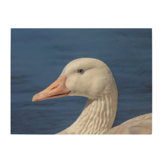 24x18 White Canadian Goose Wood Wall Art