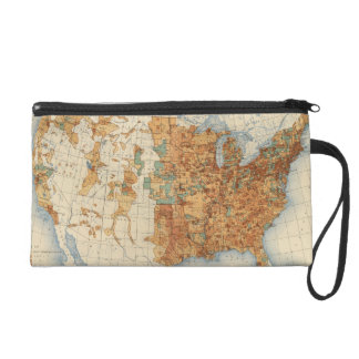 25 Density of increase of population, US, 18901900 Wristlet Clutch