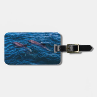 2 Bottlenose Dolphins - Luggage Tag