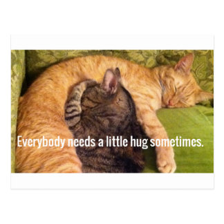 2 Cats Cuddling and Sleeping Postcard
