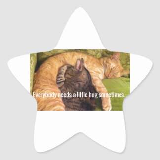 2 Cats Cuddling and Sleeping Star Sticker