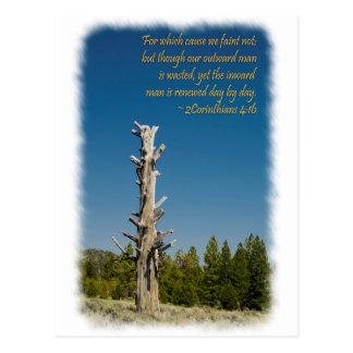 2 Corinthians 4:15 Postcard