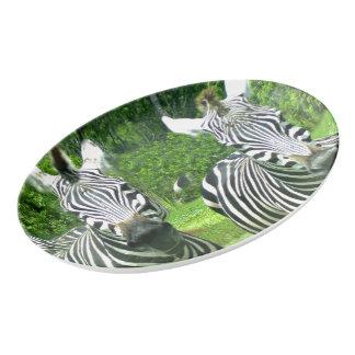 2 Cute Zebras Porcelain Serving Platter