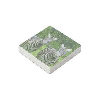 2 Cute Zebras Stone Magnet