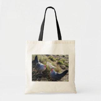 2 Free Range Silver Grey Dorking Hens