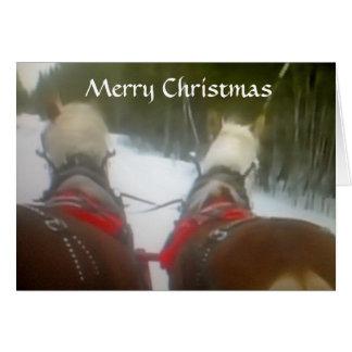 2 HORSE OPEN SLEIGH CHRISTMAS CARD