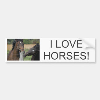 2 Horses Chewing a Fence Post Car Bumper Sticker