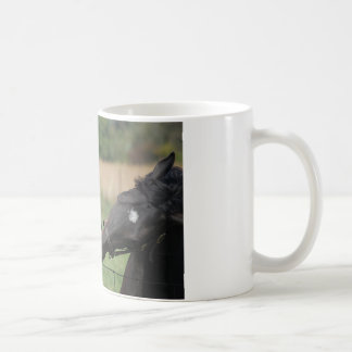 2 Horses Chewing a Fence Post Mugs