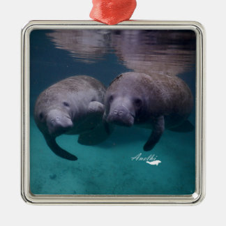 2 Manatee Friends premium square ornament