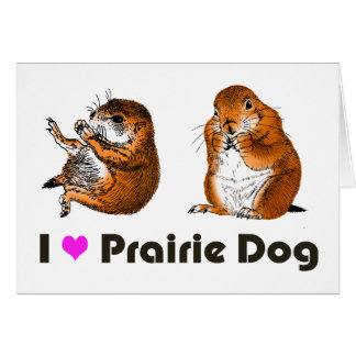 2 preirie dogs card