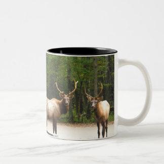 2 Rocky Mountain Elk Mugs