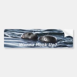 """2 Seals: """"Wanna Hook Up"""" (Making a Pass) Bumper Sticker"""