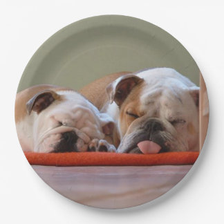 2 sleeping bulldogs.png paper plate
