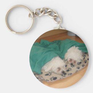 2 Sleepy_Bichon_Puppies Key Ring