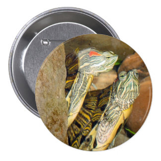 2 Turtles Button