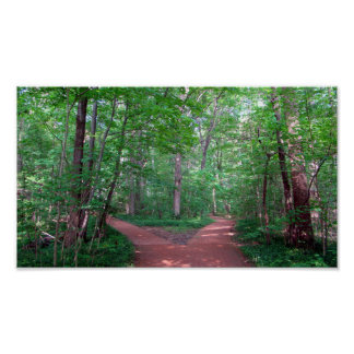 2 way path Poster