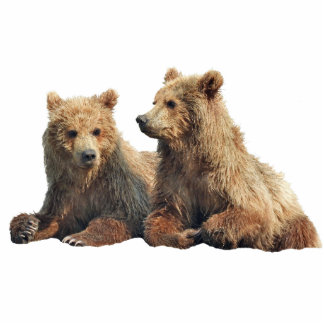 "2""x3"" Sculpture of grizzly bear cubs Standing Photo Sculpture"