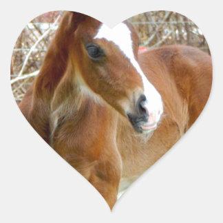 2CUTE HORSE FOAL BABY PONY HEART STICKER