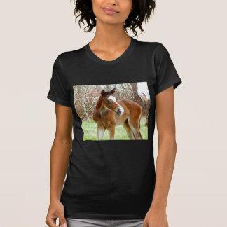 2CUTE HORSE FOAL BABY PONY T-Shirt