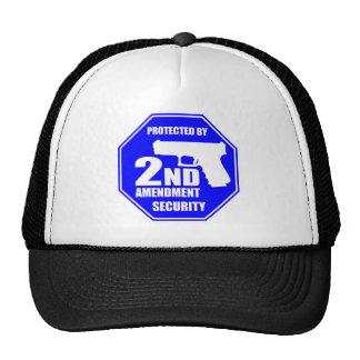 2nd Amendment 2 Cap