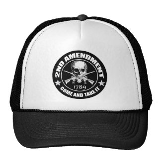 2nd Amendment Come And Take It Skull And AR s Hat