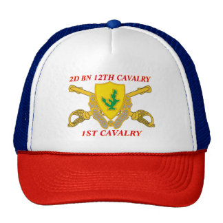2ND BATTALION 12TH CAVALRY 1ST CAVALRY HAT