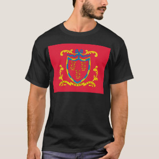 2nd Connecticut Regiment Flag T-Shirt