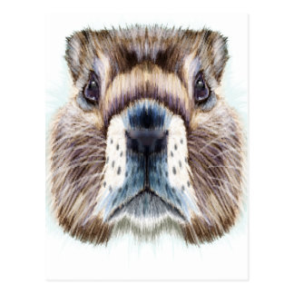 2nd February - Marmot Day - Appreciation Day Postcard