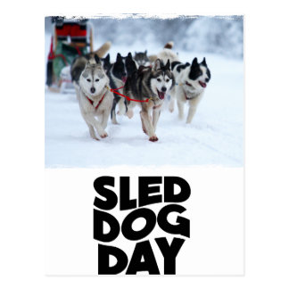 2nd February - Sled Dog Day Postcard