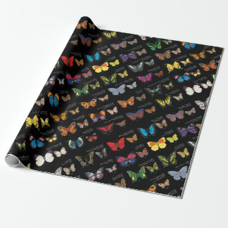30 Butterfly Species from Around the World Wrapping Paper