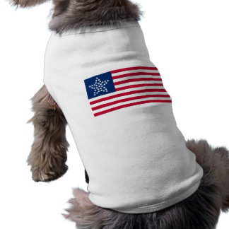 33 Star Great Star Oregon State American Flag Dog Tee Shirt