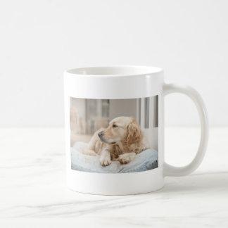 34137641_xxl coffee mug