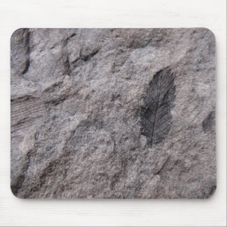 350 Million Yr. Old Plant Fossil Photo Print Mouse Pad