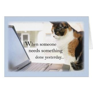 3588 Admin Pro Cat Computer, Humor Card