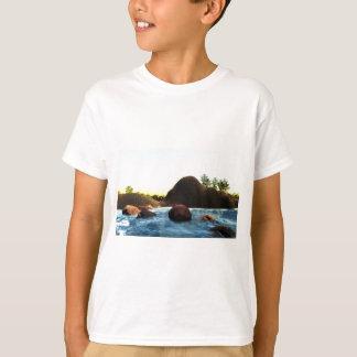 35fca8_2de3b51ddf0442a59af5adb37a8659c2~mv2_d_2272 T-Shirt