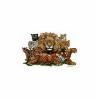 36034_b~Great-Cats-Posters Standing Photo Sculpture