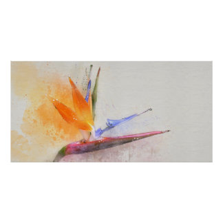 """36"""" x 12"""", Value Poster Paper (Matte) Watercolor"""
