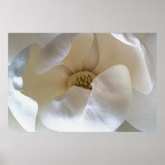 "36"" x 24"" magnolia poster, value matte poster"