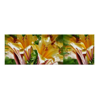 "36x12"" FRESH Flower Show : Golden Positive Energy Posters"
