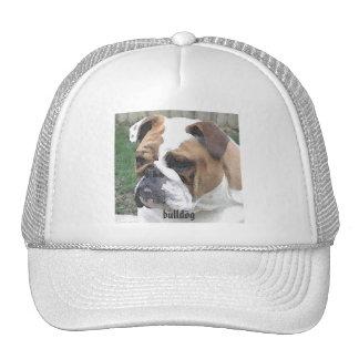 3-29-06 009, bulldog cap