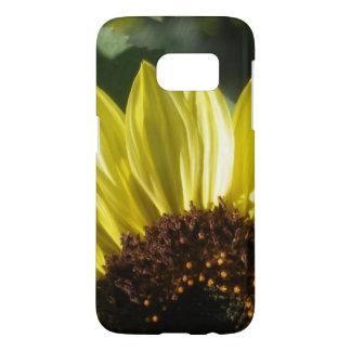 3/4 Sunflower