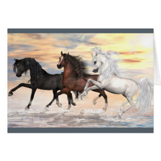 3 Arabians Greeting Card, white envelopes included Card