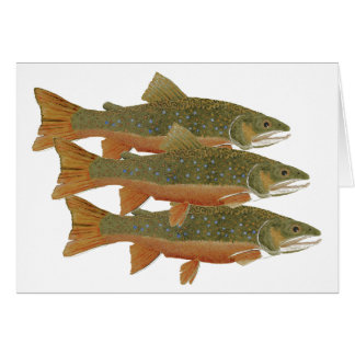 3 Brook Trout Card