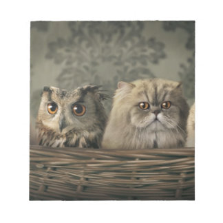3 Cats and a Owl in a Basket Notepad