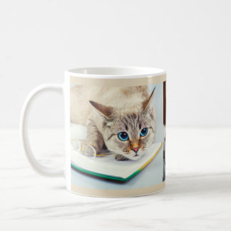 3 Custom Photos Love Cute Kitty Cats Lover Gift Coffee Mug