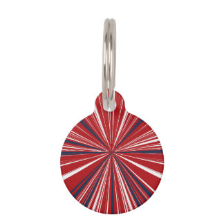 3-D explosion in Patriotic Colors Pet Name Tag